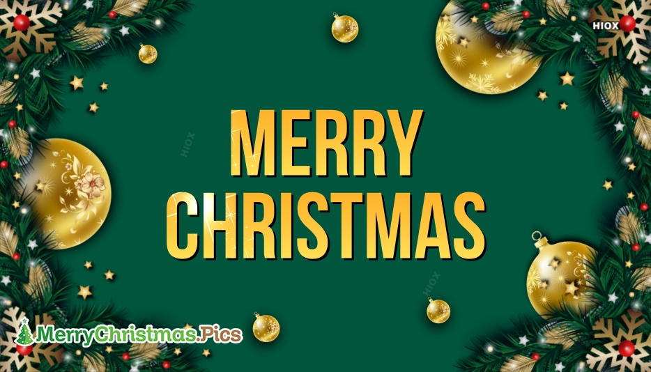 Merry Christmas Dp Pictures, Pics