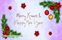 Wish You A Merry Christmas Picture