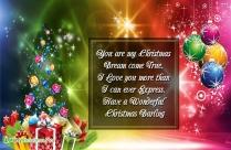 Merry Christmas To My Dear Love