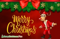Merry Christmas Reindeer Images