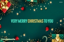 Merry Christmas Winter Greetings