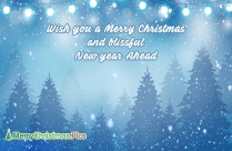 Wish You A Merry Christmas And Blissful New Year Ahead