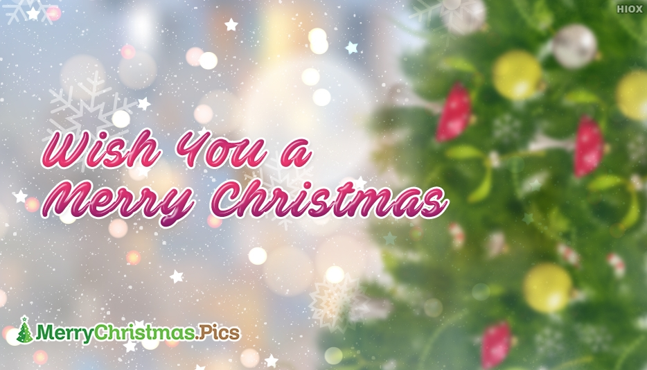 Wish You A Merry Christmas Greetings
